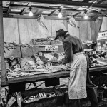 Eel Vendor. London, England