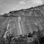 Vineyard on the Rhine. Bacharach(?), Germany